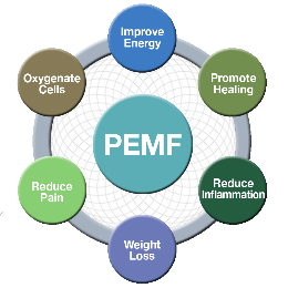 PEMF Pulsed Electrical Magnet